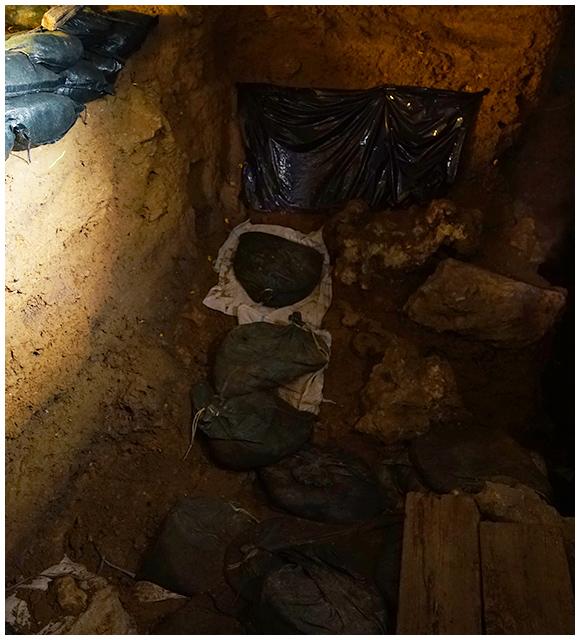 サキタリ洞調査区